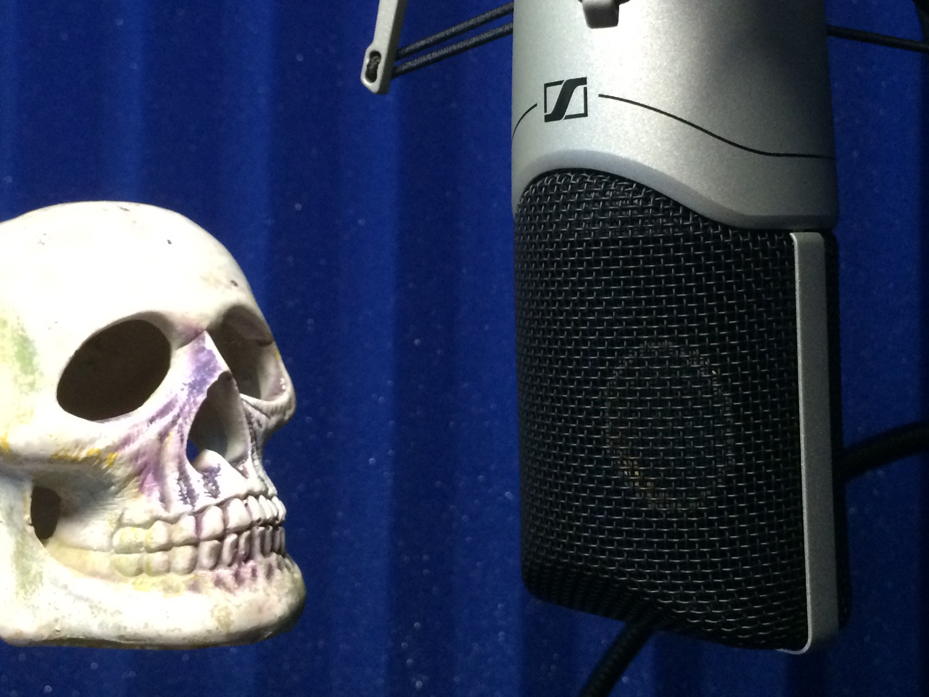 Alas Poor Voice Actor